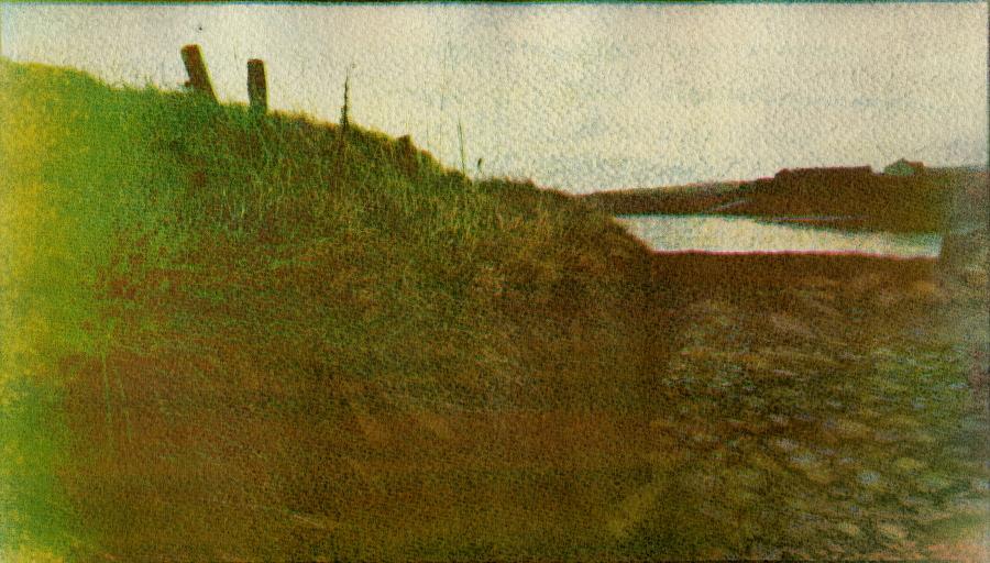 Ireland in gum by Lidija Ivanek SiLa