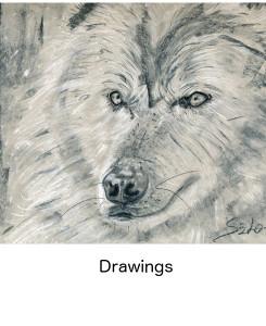 thmb_drawings